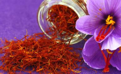 Šafran je natraženiji i najskuplji začin na svijetu koji ima brojna ljekovita svojstva